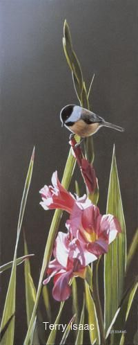 """Chickadee and Pink Gladiolas""  Terry Isaac"