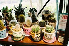 The plants pots have faces