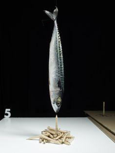 The Art Of Gastronomical Design by Andrew Stellitano | Trendland: Design Blog & Trend Magazine