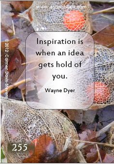 255 Inspiration is when an idea gets hold of you. | A Sunlit Walk