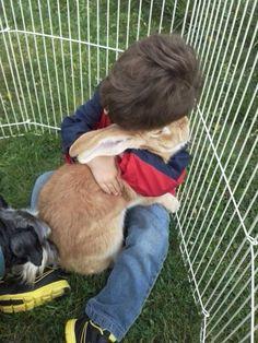 kid and his aunts bunny