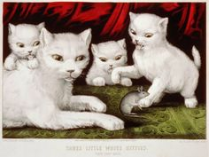 Three Little White Kitties Poster by VintageFactory Vintage Artwork, Modern Artwork, Vintage Prints, Vintage Posters, Three Little, Little White, Currier And Ives, White Kittens, Poster Prints