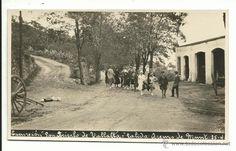 Carretera a Collsacreu a l'alçada de Can Bellsolell