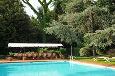 Weddings and Villa Lungomonte - Broad lawns lead from the villa to a large swimming pool partly shaded by umbrella pines and an ancient gingko tree.