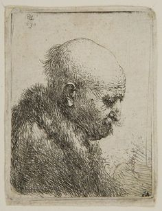 Rembrandt Harmensz van Rijn -  Profile of a Bald-headed Man, 1630,  Etching | Harvard Art Museums