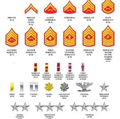 Reposted from ( - Marine Corps rank structure. As a Marine moves up the ladder, his or her responsibility and… Marine Corps Uniforms, Marine Corps Officer, Marine Corps Ranks, Marine Corps Humor, Marine Corps Insignia, Marine Corps History, Usmc Ranks, Navy Ranks, Military Ranks