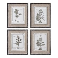 Grey Botanical Study made by Botanical Expressions