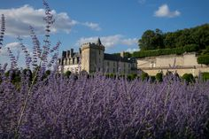 Gal Meets Glam - 2015 July 22 - Red Gingham - Location: Loire Valley - Travel Photo Inspiration
