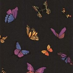 http://www.wallpaperking.co.uk/designer-wallpaper/2817-flutterby-black-wallpaper-31-174.html  The Flutterby Wallpaper by leading British designer Julian MacDonald is flirty and fun. The fabulously colourful butterflies add delicate splashes of sunshine to interior walls. £19