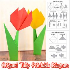 Origami Tulip Printable Diagram