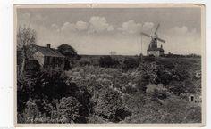 Vintage Edwardian Seaside Photochrome Photo Reprint Mundsley on Sea Norfolk A4