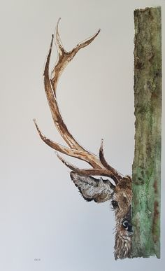 Watercolor Painting Techniques, Watercolor Paintings, Watercolor Deer, Watercolour, Weird Art, Strange Art, Simple Lines, Art Photography, Artsy