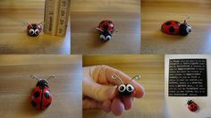 *Lady the Ladybug*  Made by request for a co-worker.  She LOVES ladybugs.    Handmade and hand painted by me.  Made with polymer clay and wire.