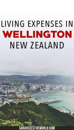 Thinking about moving to New Zealand? What you need to know about the cost of living in New Zealand's capital city including common household expenses.