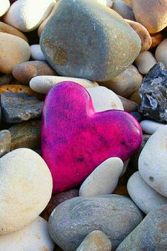 Wild Star Hearts-PINGOUIN COEUR-Serviette de plage,