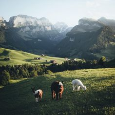 Stunning Travel and Landscape Photography by Hannes Becker #photography #landscaping #nature #travel #wildlife