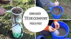 Como hacer Té de compost paso a paso.