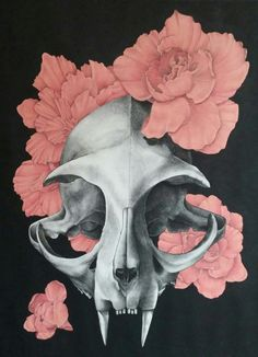 """bonedahlia:  Cat Skull with Begonias. 31""""×22"""". Charcoal, prismacolor pencils, and acrylic.  Really happy with how this turned out but I may add a little something more later. Many more of this series to come!"""