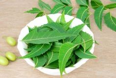 Benefits And Uses Of Neem.  Neem powder for a beautiful complexion.