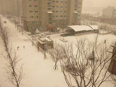 snow sight.