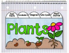 Primary Chalkboard: It's Planting Time