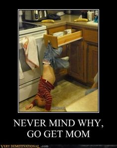 Hilarious! Reminds me of a mishap in Crestview ;)  @Abby Christine Christine Price @Alicia T T Stone