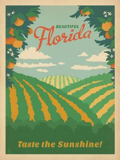 Florida oranges vintage poster. The sunshine state.