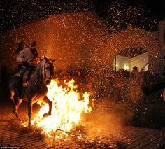 Tree branches are gathered in the days leading up to the annual event, where horses jump through flames until midnight when riding stops