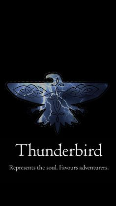 I just took the Pottermore quiz for the Ilvermorny houses... Thunderbird! …