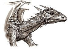 My friend is getting really good at drawing dragons.