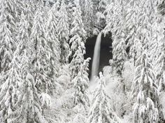 North Falls surrounded by snow-covered trees Photographic Print by Craig Tuttle at AllPosters.com