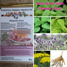 Benefits of Basil | Essential Herbal Products