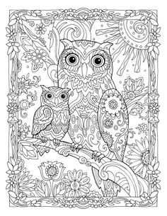 "Creative Haven Owls Coloring Book by Marjorie Sarnat, ""Owl and Baby"""