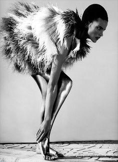 feathery fur