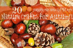 20 wonderful Nature Crafts for Fall. Love all these wonderfully tactile crafts using items found in nature during Autumn. Many are perfect for children with visual impairments. (Image: pine cones, apples, and other richly colored fall finds) Autumn Activities For Kids, Fall Preschool, Fall Crafts For Kids, Craft Activities, Fun Crafts, Art For Kids, Acorn Crafts, Nature Activities, Beach Crafts