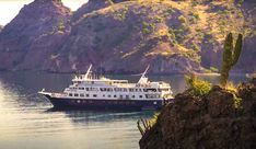 uncruise adventures mv safari endevour cruise ship in sea of cortez Cruise Vacation, Vacations, Cruise Ships, Safari, Sea, Explore, Adventure, Holidays
