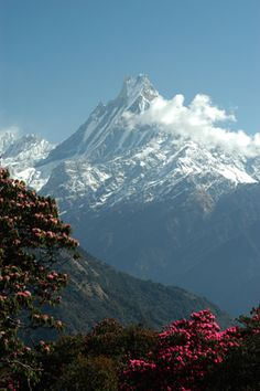 himalayan mountains pictures | ... of the Himalaya in central Nepal is a mountain influenced by monsoons