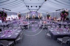 A grey and pink atmopsheric themed marquee party.