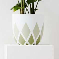 As seen in Real Living Australia, Marie Claire, Vogue Australia. Design Twins Pots are the perfect addition to any home. Shop now Painted Flower Pots, Painted Pots, Diy Home Projects Easy, Cute Bedroom Decor, Flower Pot Design, Indoor Plant Pots, Succulent Pots, Dollar Store Crafts, Ceramic Planters