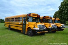 Toy School Bus, Meg Donnelly, Football Cheerleaders, Busses, Bus Stop, Totally Awesome, Chrome, Camping, Trucks