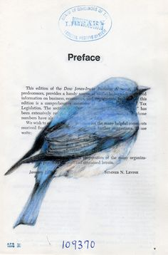 Beautiful illustrations by Paula Swisher.  I love the combination of the incredible drawing on top of the written page.