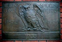 Bohemian Grove Owl