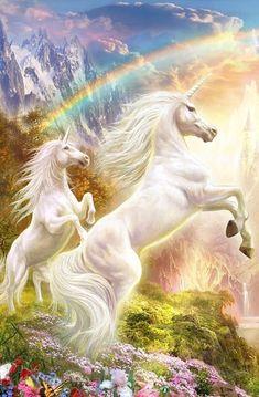Two unicorn and beautiful rainbow Unicorn And Fairies, Unicorn Fantasy, Unicorn Horse, Unicorn Art, White Unicorn, Mystical Animals, Mythical Creatures Art, Magical Creatures, Fantasy Creatures