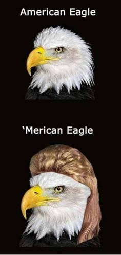 The picture that describes my ex LoL 'Merican'