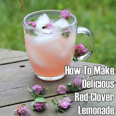 ❤More than just a refreshing drink for the summer, this red clover lemonade recipe we discovered also makes an excellent beverage on account of its healthy ingredients!❤