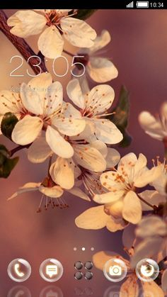 Cherry Blossom Theme for CLauncher