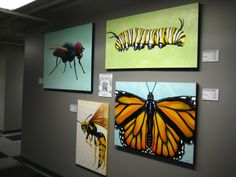 """My Bug Collection"" in exhibit at ARTIST AGAINST HUNGER 6. June 1st & 2nd 2012...Sioux Falls SD USA"