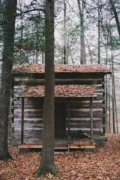 log cabin in the woods Getaway Cabins, Lake Cabins, Cabins And Cottages, Little Cabin, Little Houses, Tiny Houses, Cabana, Log Cabin Exterior, Cozy Cabin