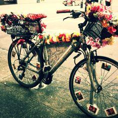 Newtown tarot card reader bike. --> http://All-About-Tarot.com <--