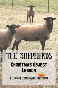 The Shepherds Christmas Object Lesson - How come God chose to have the shepherds be a part of the event of Jesus' birth? Youth Group Lessons, Kids Church Lessons, Bible Lessons For Kids, Bible For Kids, Sunday School Curriculum, Sunday School Activities, Bible Activities, Christmas Sunday School Lessons, Sunday School Projects